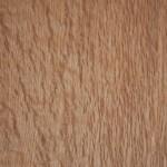 Birdseye Oak