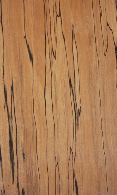 Spalted Beech Wood ~ Artisan drumworks inc custom drums stave drum